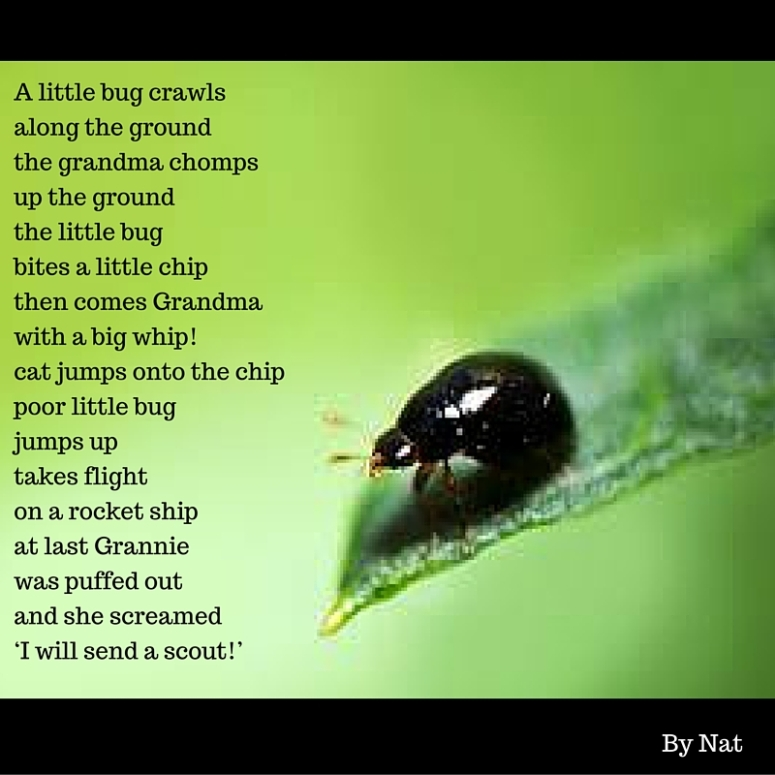 A little bug crawlsAlong the groundThe grandma chompsUp the groundThe little bugBites a little chipThen comes GrandmaWith a big whip!Cat jumps onto the chipPoor little bug Jumps upTakes flightOn a rocket shipAt last Gran