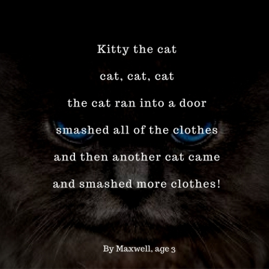 Kitty the catCat, cat, catThe cat ran into a doorsmashed all of the clothesand then another cat cameand smashed more clothes!