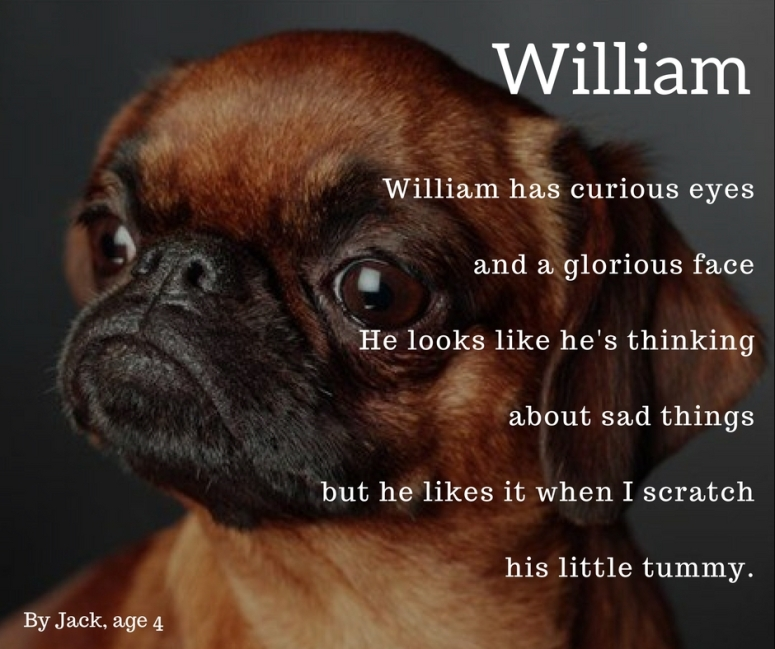 William (1)
